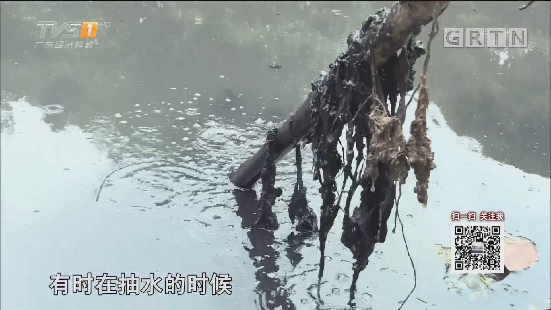 新闻调查:东莞寮步塘唇涌黑臭无比 村民苦不堪言