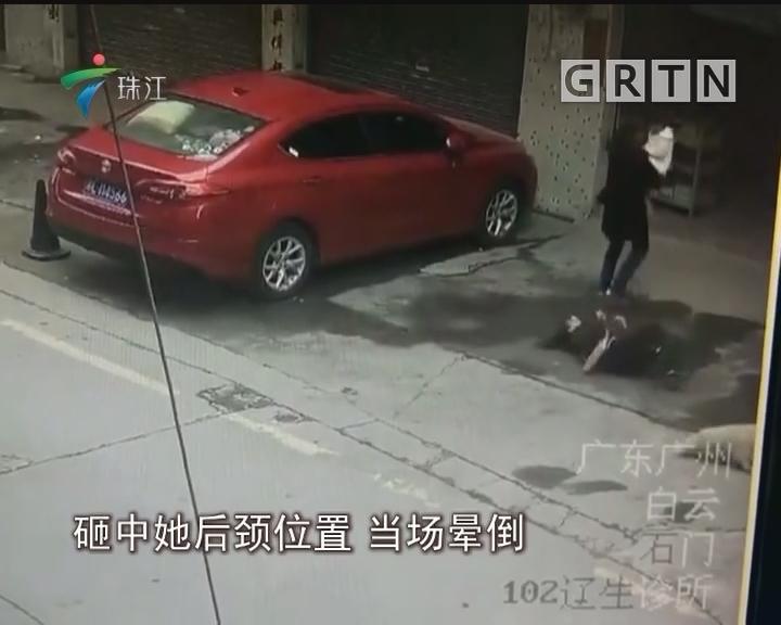 广州:飞来横祸 狗从天降砸伤人