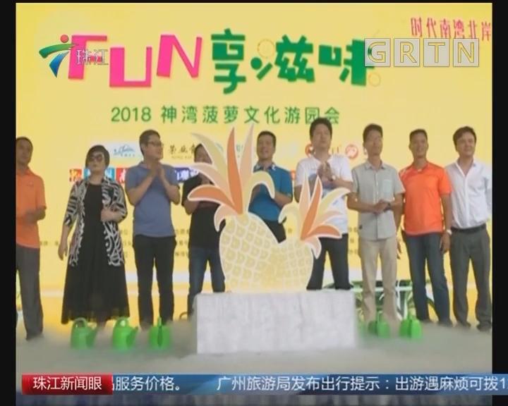 中山神湾菠萝文化游园会开幕 今年菠萝价涨