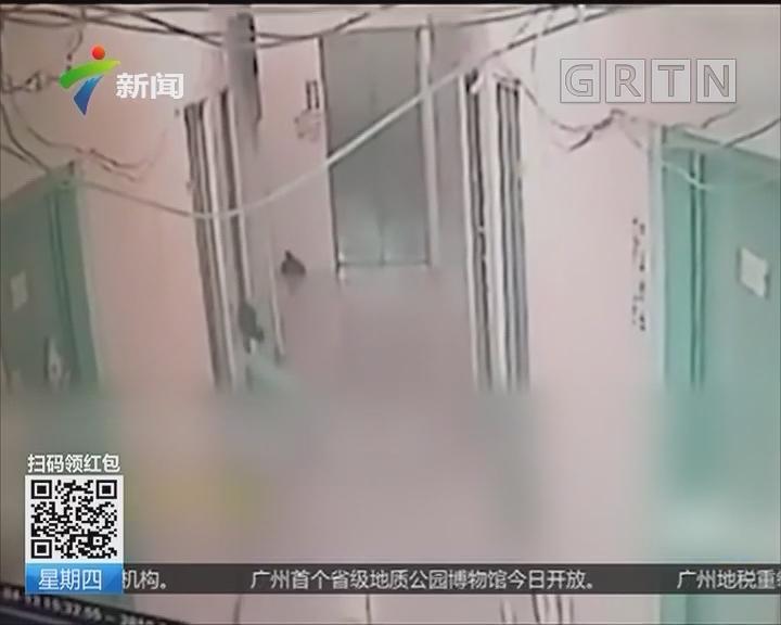 深圳:女子遭男邻居强拽进屋欲行不轨 男子已被刑拘