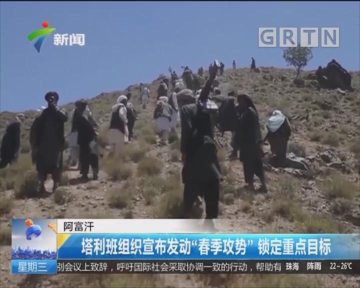 """阿富汗:塔利班组织宣布发动""""春季攻势""""锁定重点目标"""