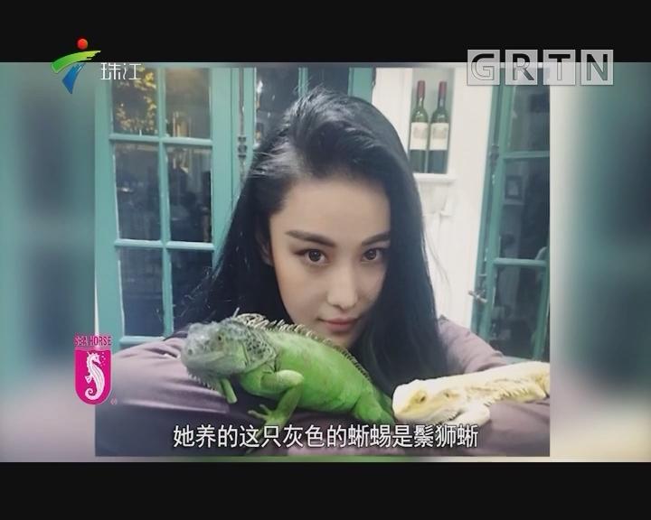 """谢霆锋王菲梁洛施张馨予 哪个明星的""""贴身情人""""最吓人?"""