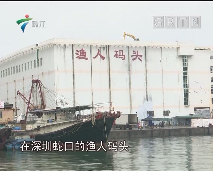"""深圳:""""渔""""情未了 百年渔人码头开拆"""