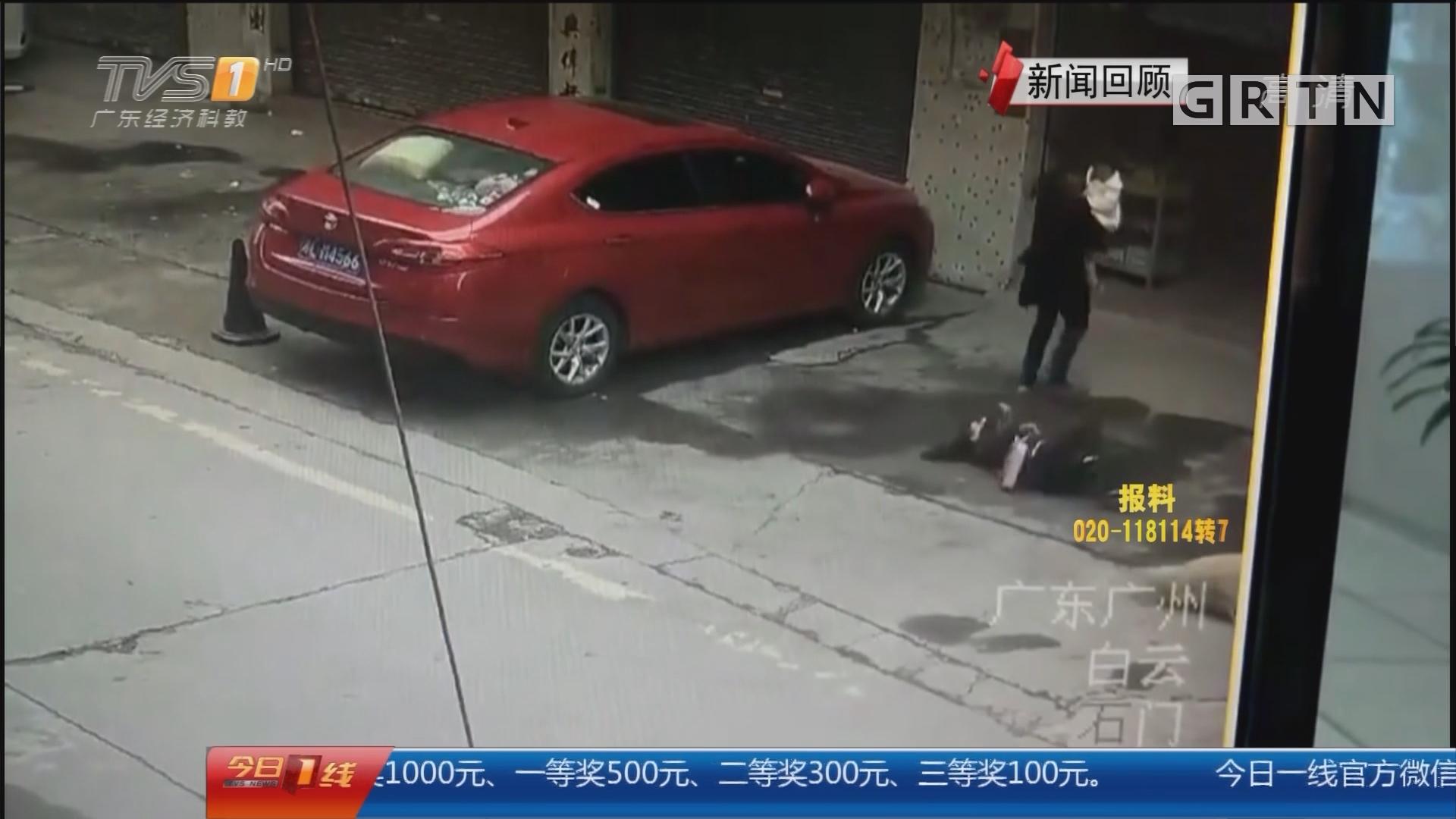 """""""狗从天降""""新闻追踪:广州 被天降大狗砸中 女子重伤昏迷第10天"""