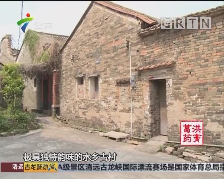 千年古镇芦苞 佛山一张不可多得的文化名片