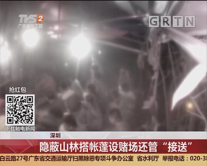 """深圳:隐蔽山林搭帐篷设赌场还管""""接送"""""""