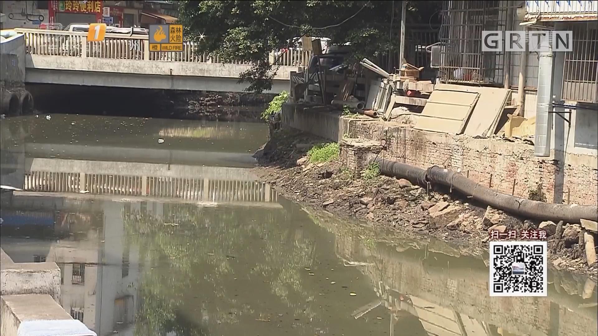 新闻追踪:广州瑞宝涌水污染 谁来负责?