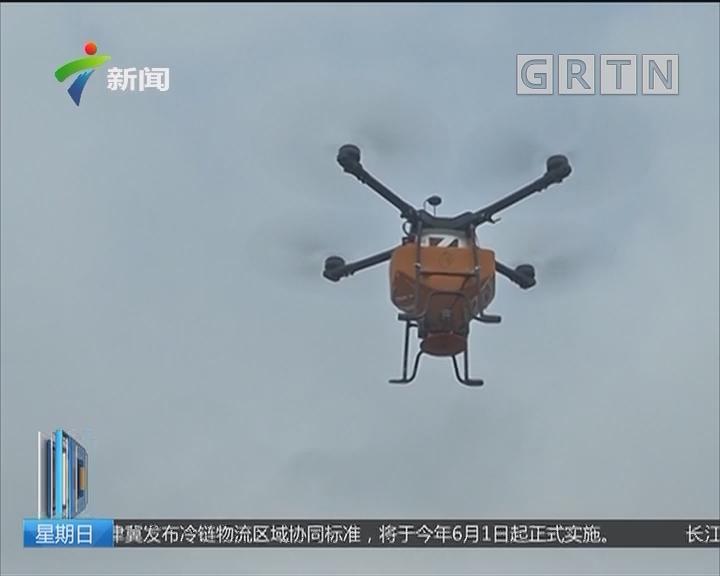 茂名高州:红火蚁危害严重 启用无人机施药灭杀