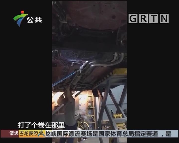 惠州:蛇藏车底不出 街坊妙计捕捉