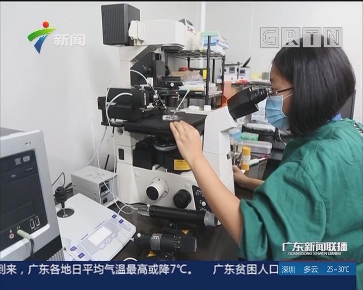 广东:加强知识产权保护 提升企业创新力