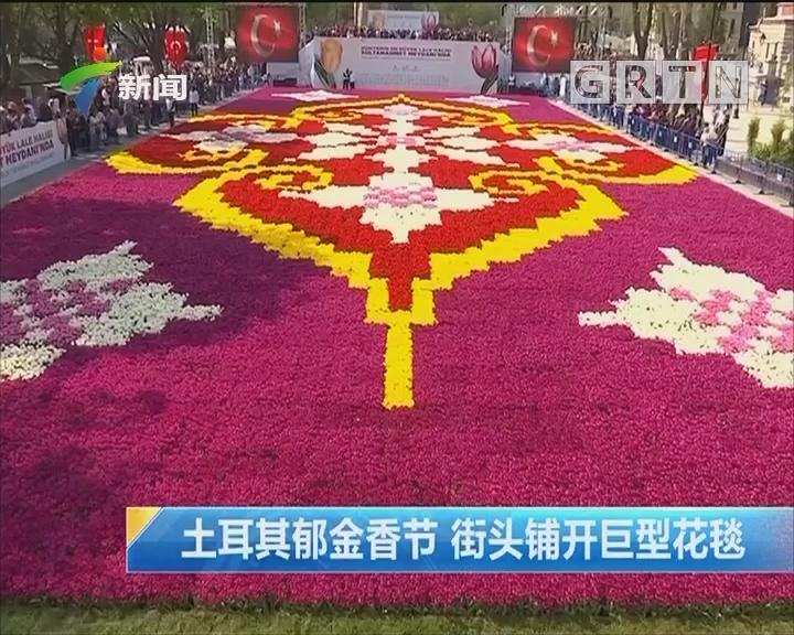 土耳其郁金香节 街头铺开巨型花毯