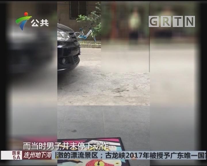 """江门:商街频现""""不雅男"""" 专家支招应对"""