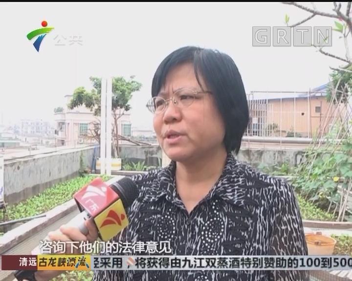 记者调查:有业主在楼顶养家禽 鸡鸭粪便惹苍蝇