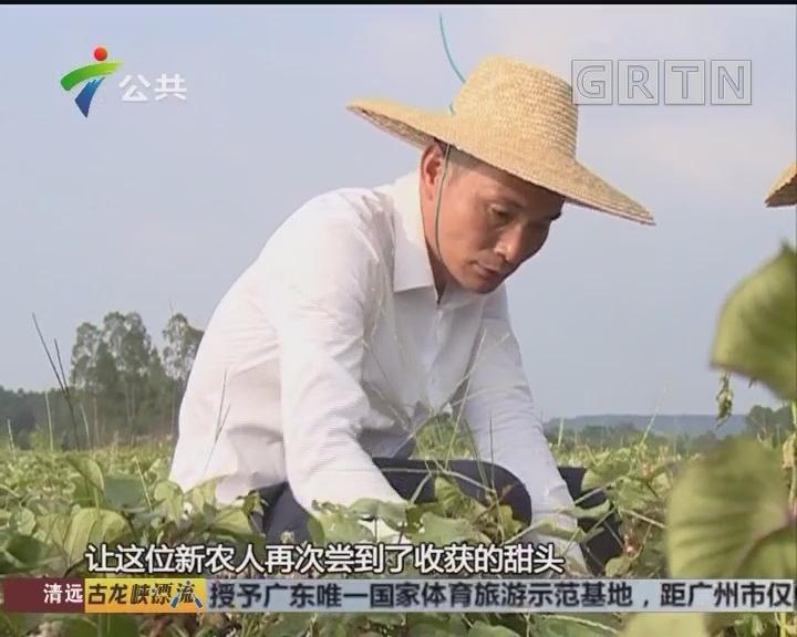 许生:积极引进培植 只为更多人品尝优质农产品