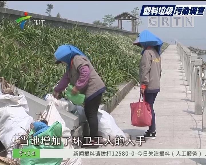 """番禺:塑料垃圾源源不断 海鸥岛""""很受伤"""""""