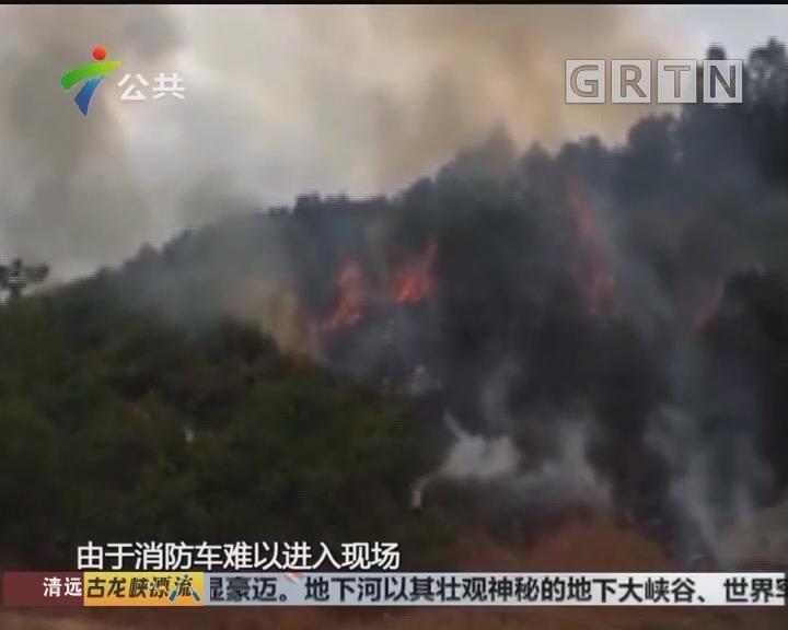 佛山:扫墓引发山火 男子被拘留12天
