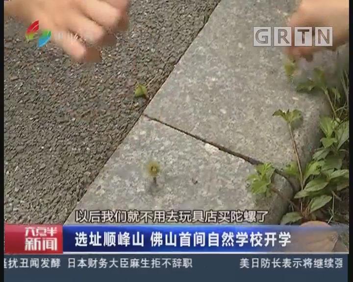 佛山:选址顺峰山 佛山首间自然学校开学