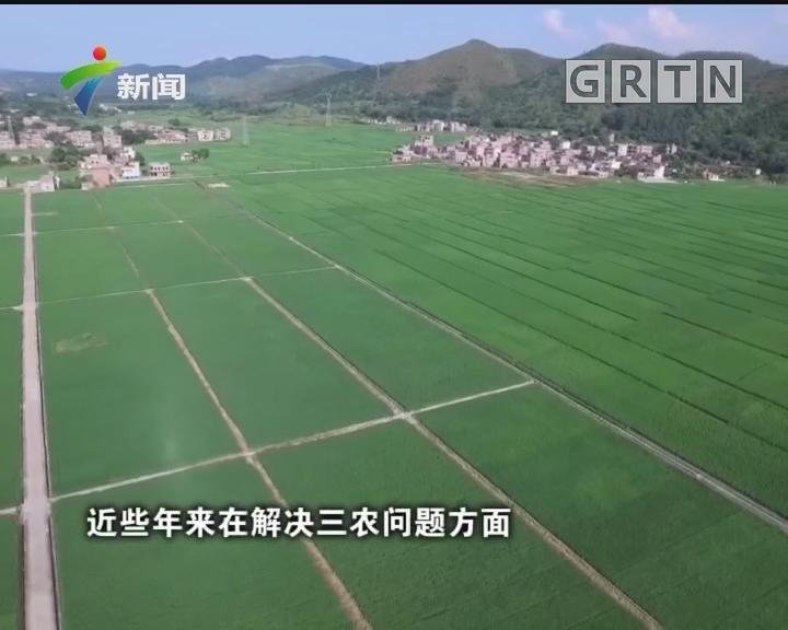 [2018-04-07]人大代表:代表献策三农 聚焦乡村振兴