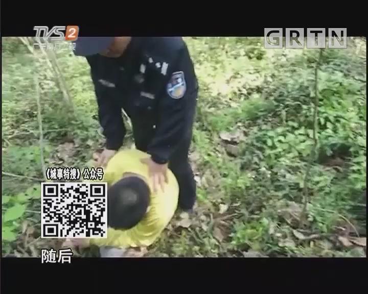 男孩大树上坠落 消防员徒手去接