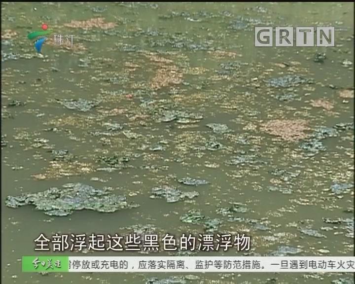 增城:河涌现大量油污 河长办:调查企业偷排