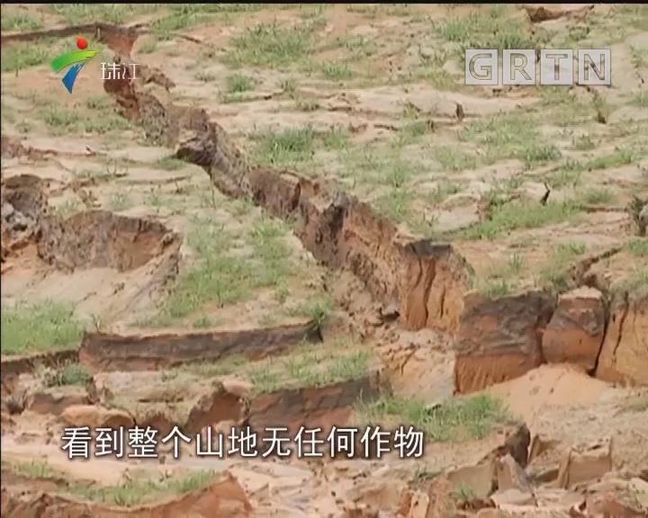 湛江:洗砂场堆放淤泥影响耕作?国土部门称不属农地