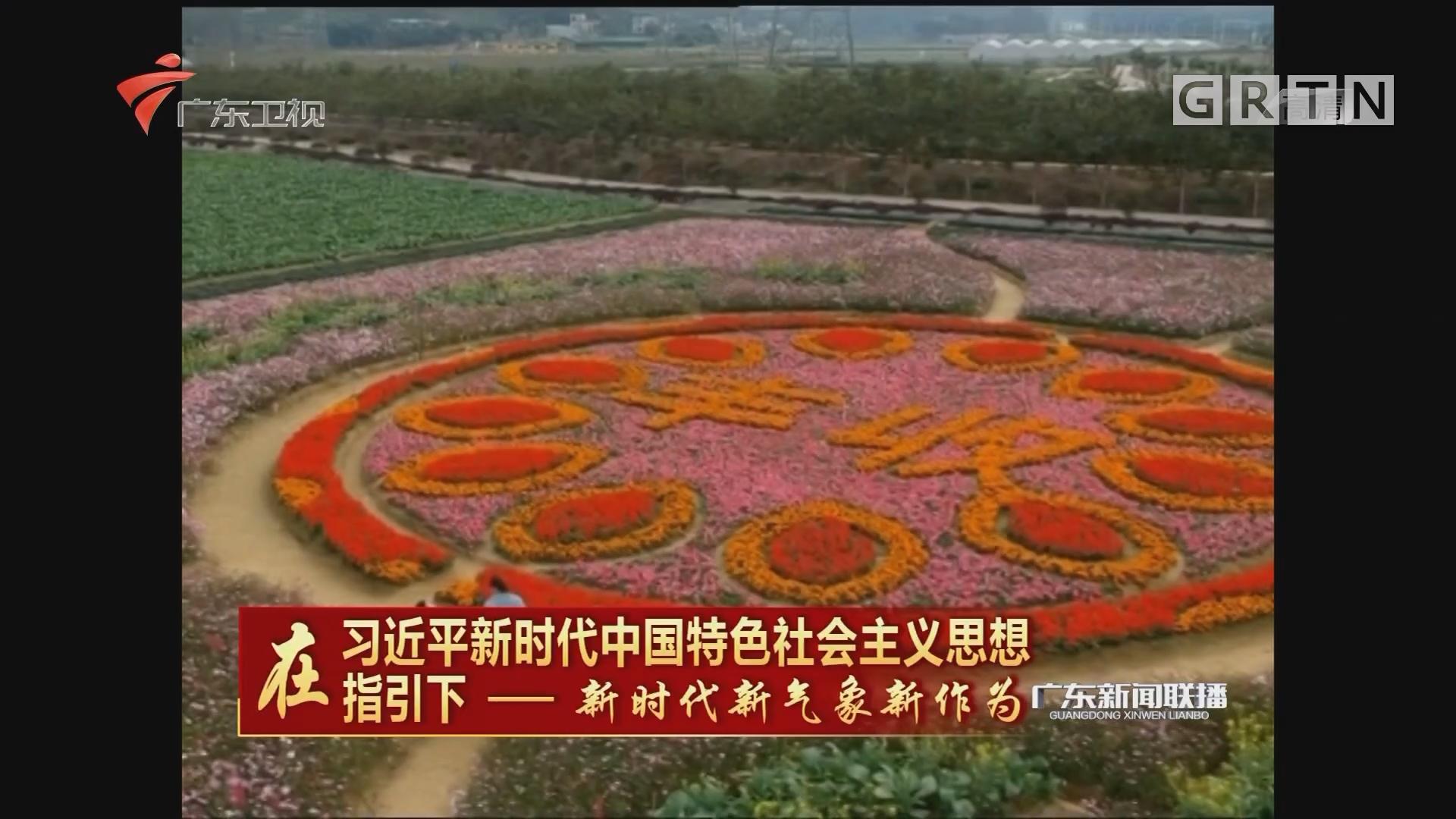 """惠州:""""3+3+X""""模式 助力乡村实现绿色崛起"""