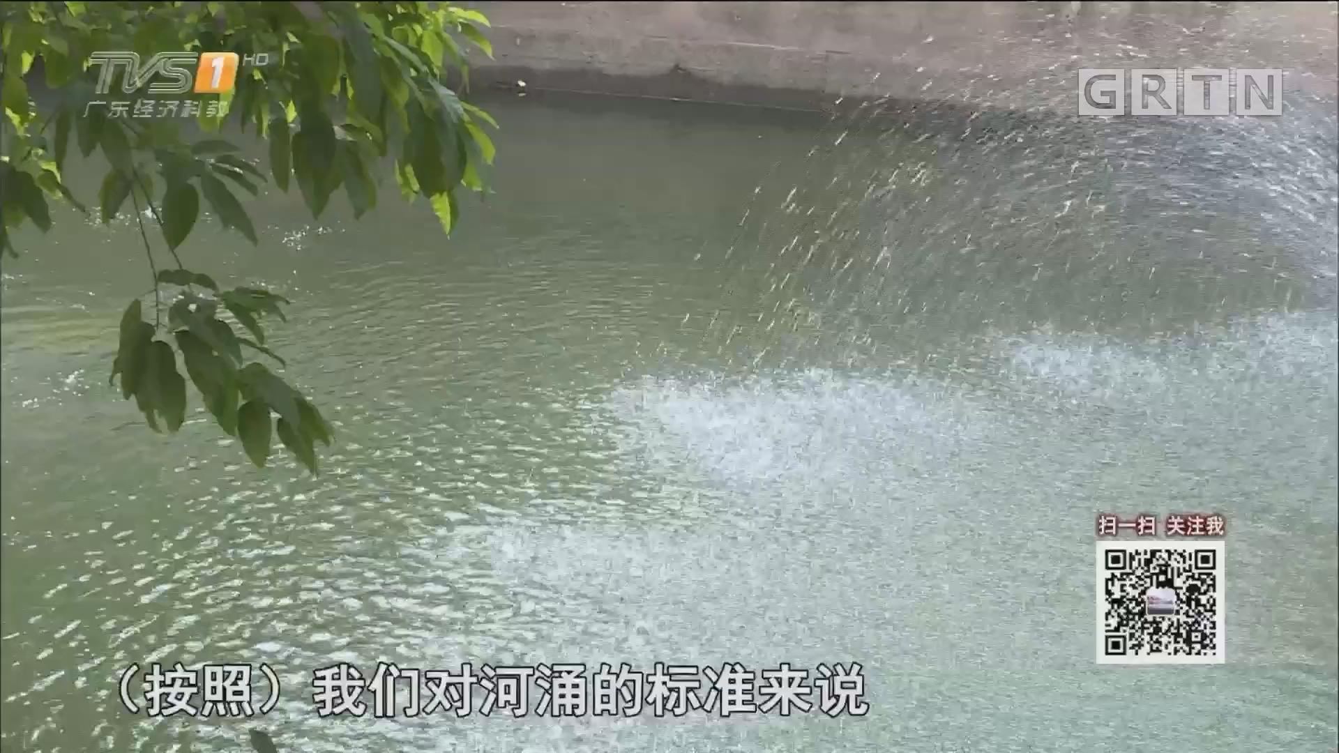 慕容森林:我想青山绿水重现驷马涌(上)