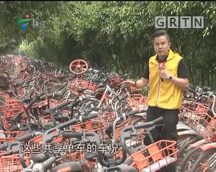 """广州:芳村现共享单车""""坟场"""""""