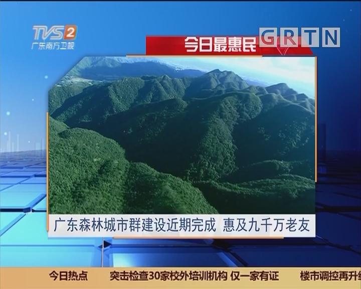 今日最惠民:广东森林城市群建设近期完成 惠及九千万老友