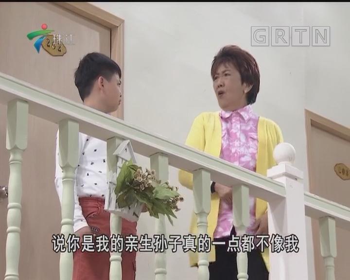 [2018-04-14]外来媳妇本地郎:社交恐惧症