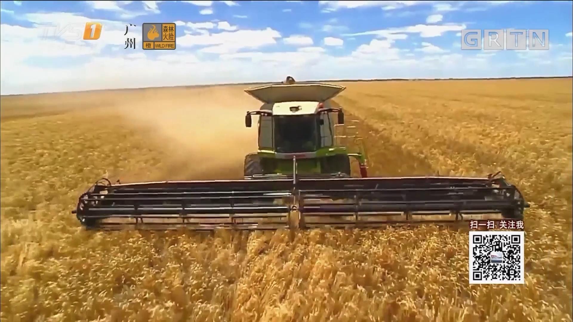 从大豆到CPI:对美大豆加关税 对国内影响有限
