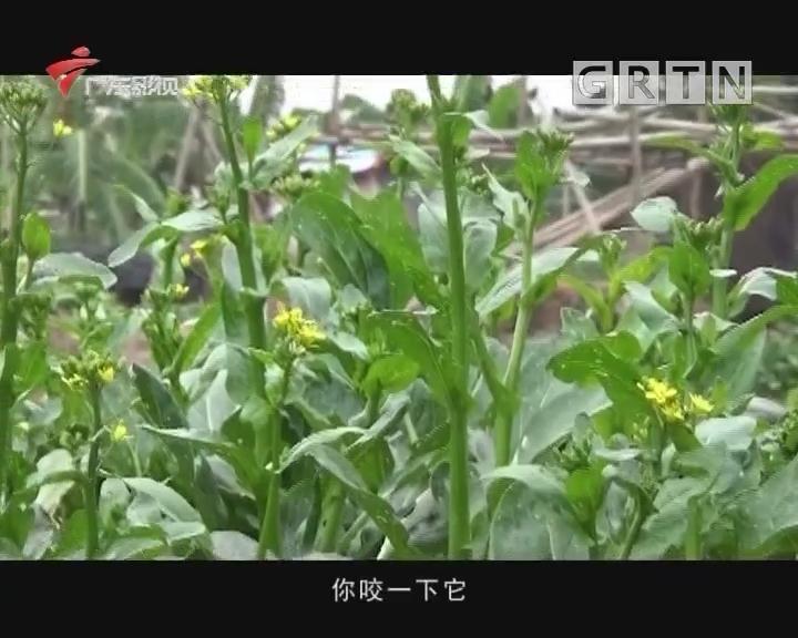 [2018-03-31]影动全城