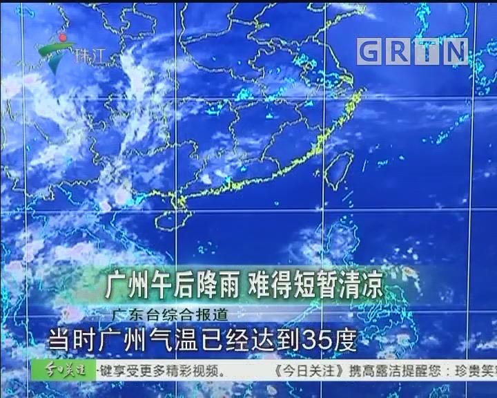 广州午后降雨 难得短暂清凉