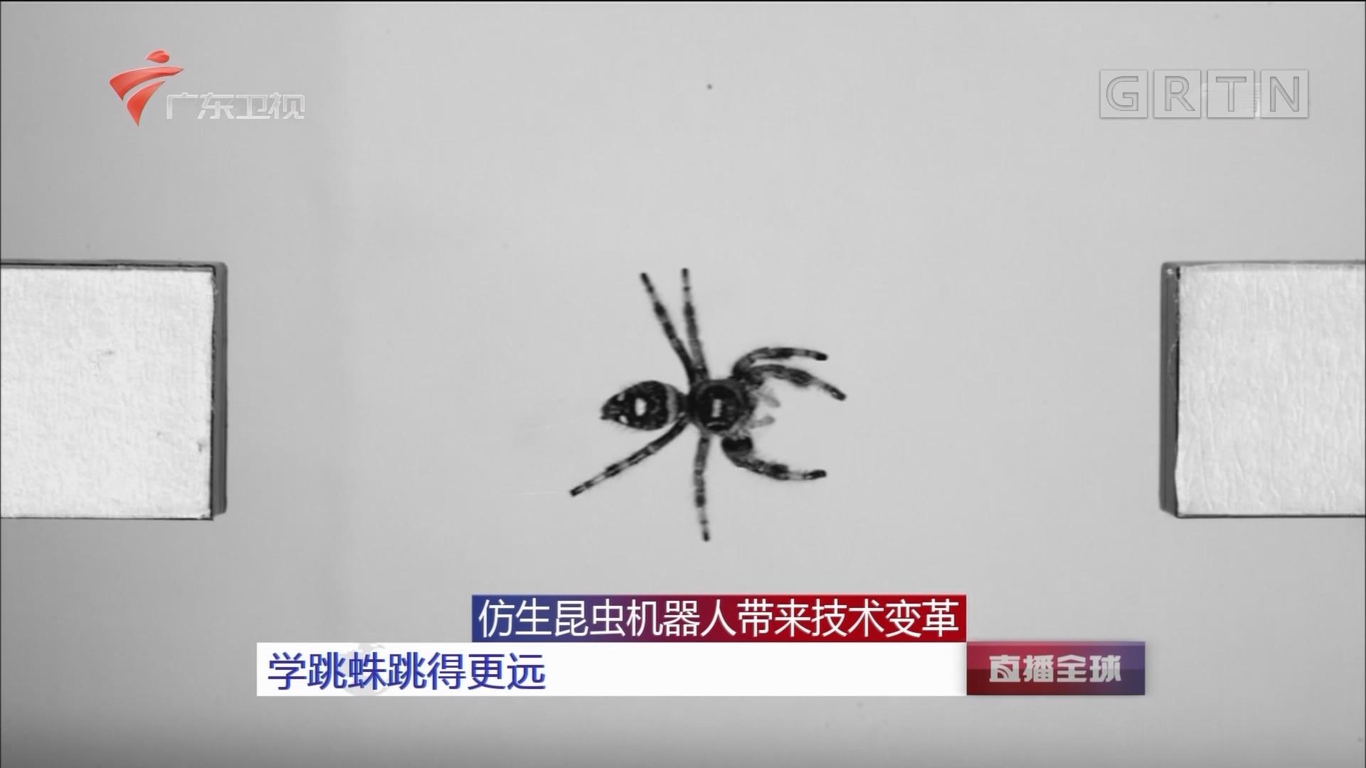 仿生昆虫机器人带来技术变革 学跳蛛跳得更远