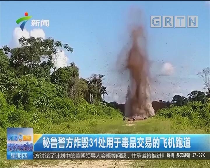 秘鲁警方炸毁31处用于毒品交易的飞机跑道