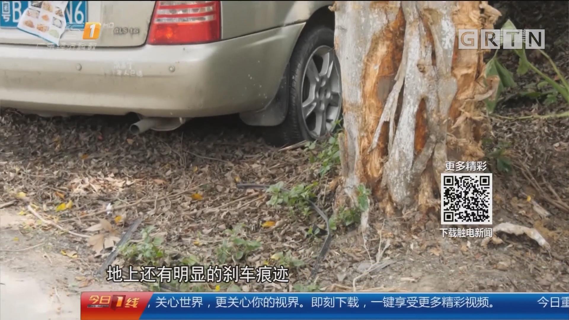 广州白云:小轿车撞树司机被困 消防深夜救援