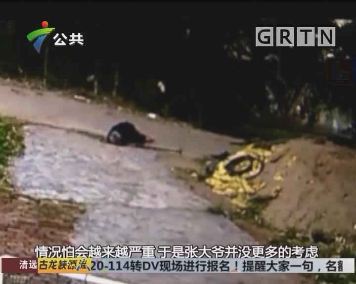 韶关:老奶奶雨中不慎摔倒 7旬大爷果断背起