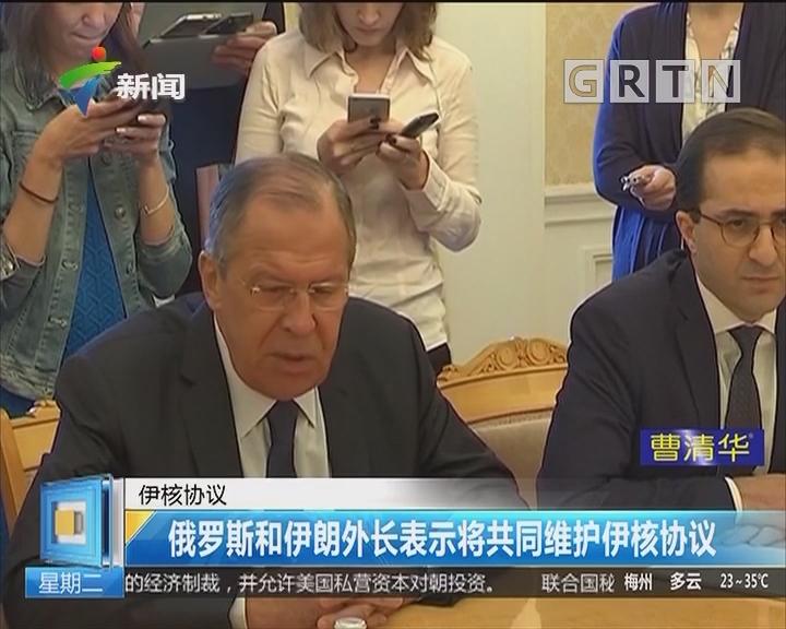 伊核协议:俄罗斯和伊朗外长表示将共同维护伊核协议