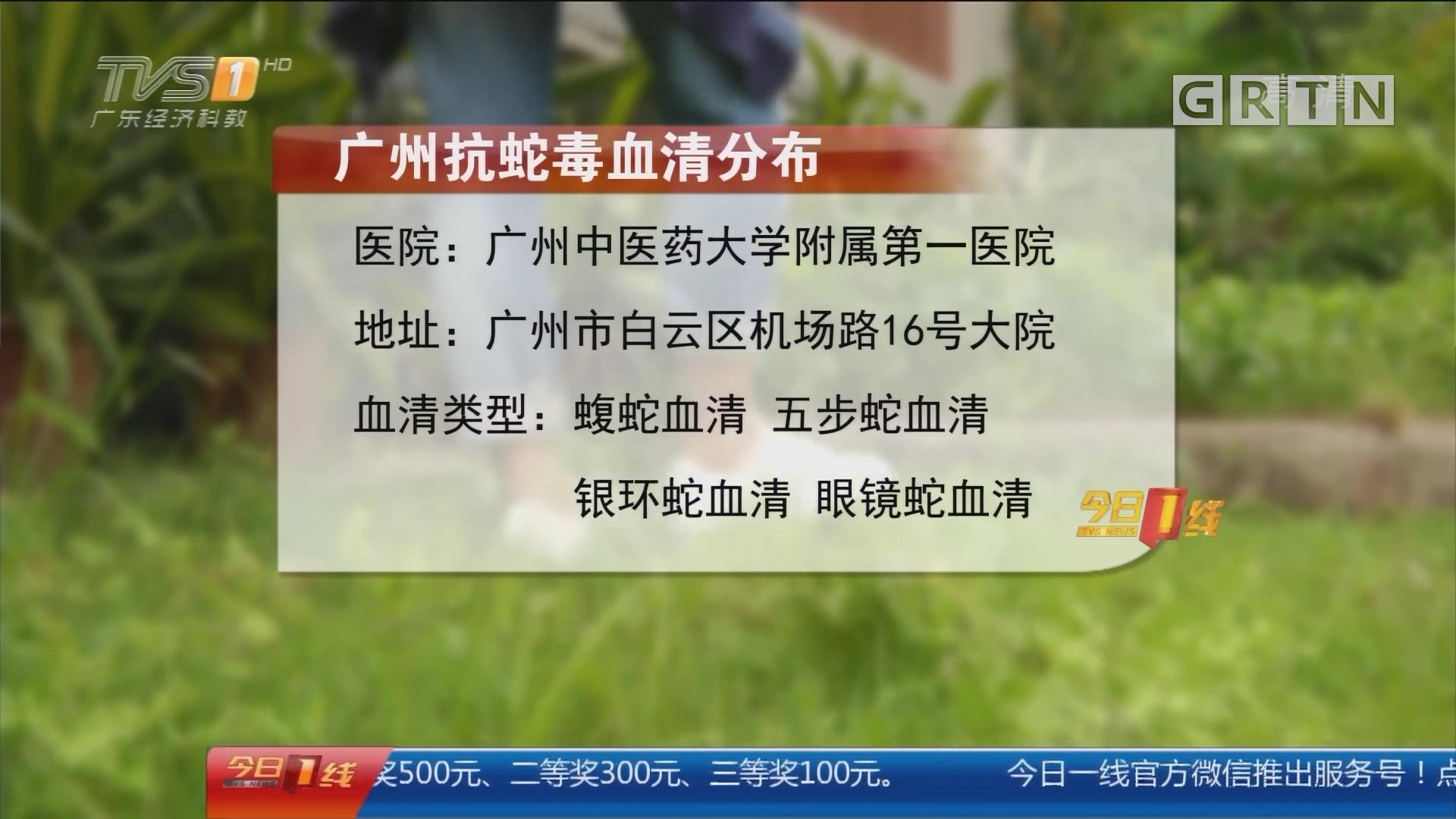 夏季防蛇咬伤:广州 险!六旬阿婆地里拔菜被毒蛇咬伤