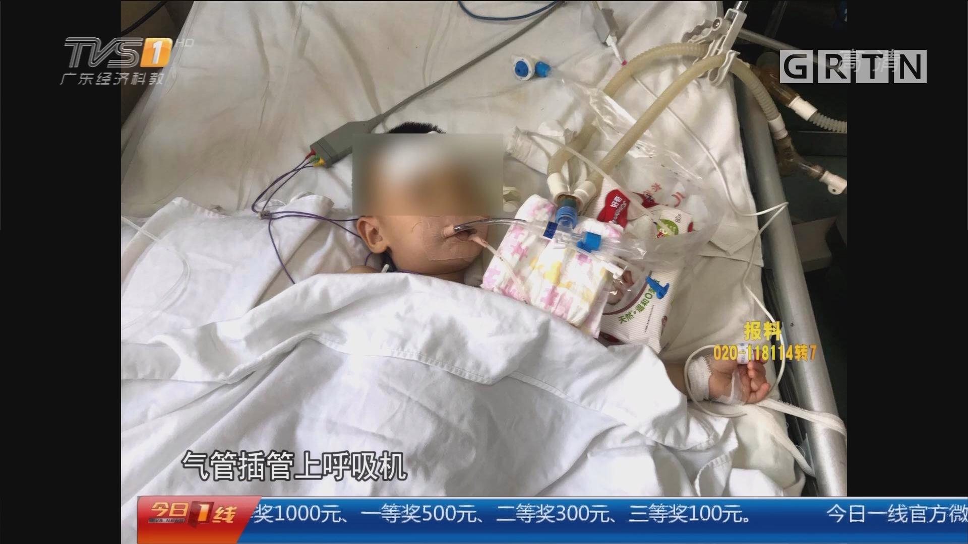 关注儿童安全:东莞 误服蚊香液一个月三起 3孩童1死2伤