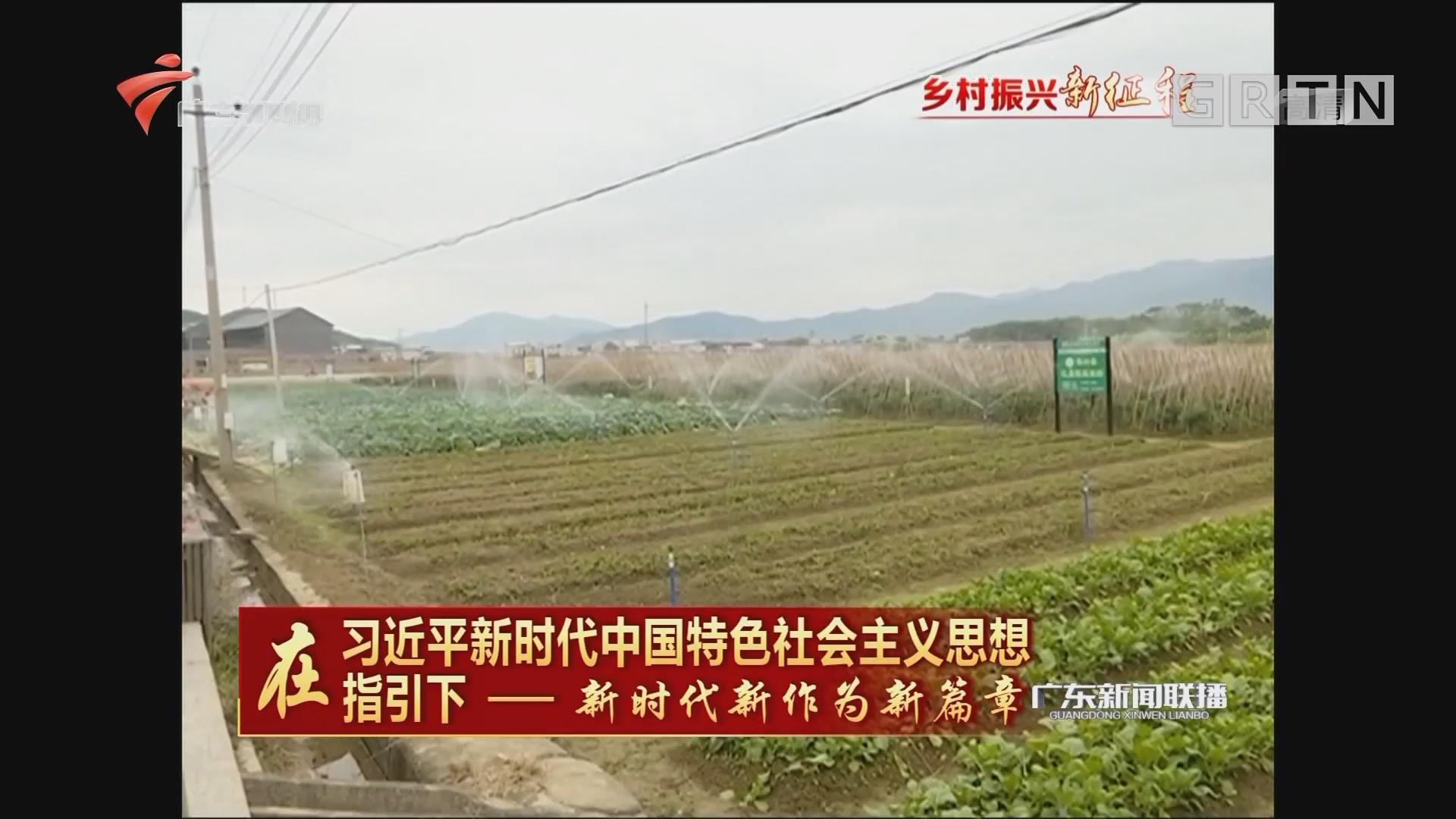 """梅州蕉岭:牵住产业""""牛鼻子"""" 追梦田园""""新农人"""""""