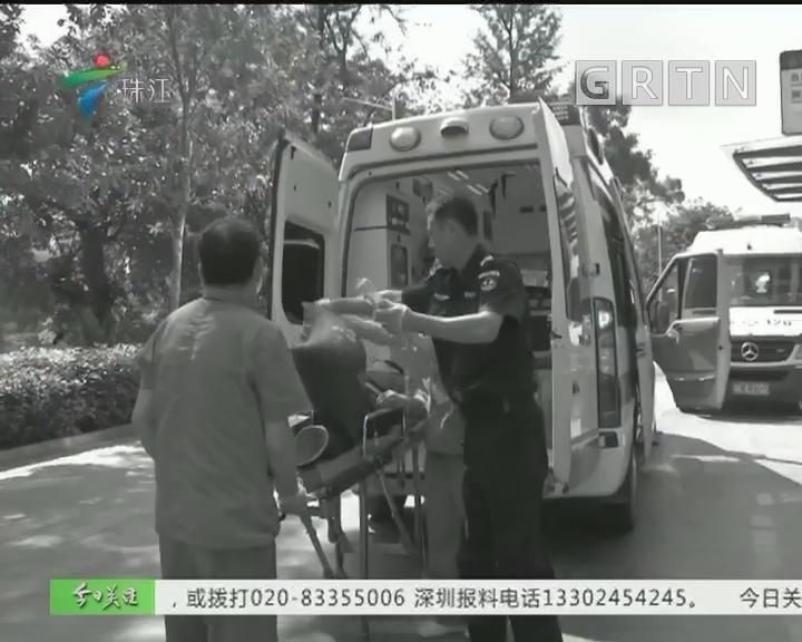惠州:男子用五步蛇浸酒被咬险丧命