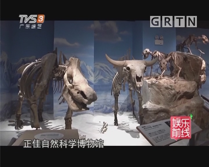 广州首座自然科学博物馆开馆