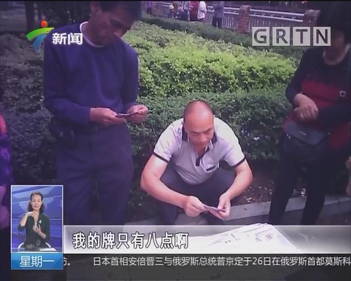 肇庆:公共休闲场所中老年人聚赌