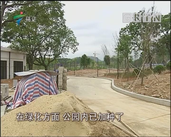 中山:金字山公园建设任务已完成7成
