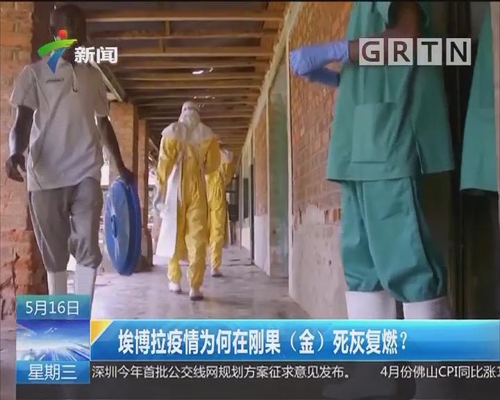 埃博拉疫情为何在刚果(金)死灰复燃?