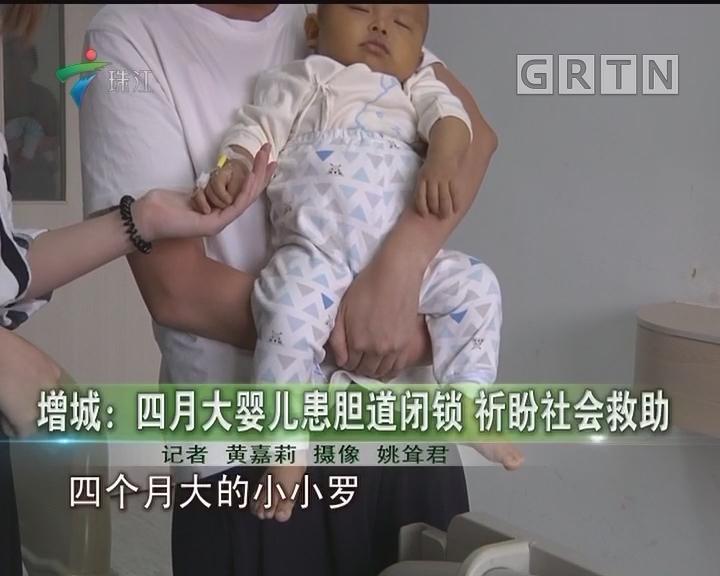增城:四月大婴儿患胆道闭锁 祈盼社会救助