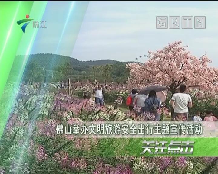 佛山举办文明旅游安全出行主题宣传活动