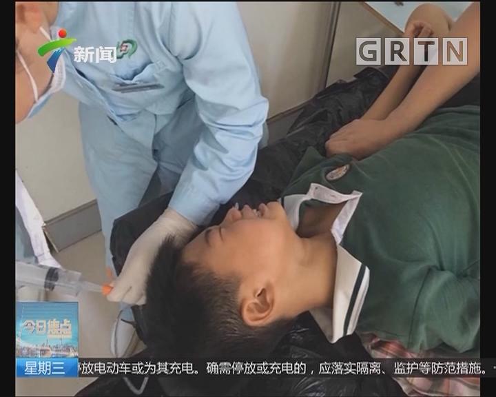中山:孩子误食紫荆花果实送院治疗
