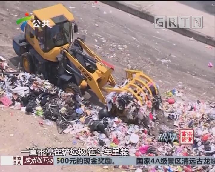 街坊投诉:垃圾堆积多日 臭气熏天蚊虫滋长